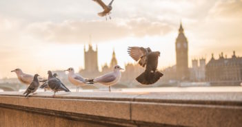 Visiter Londres en 4 jours.