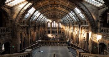 Le plus beau musée de Londres.